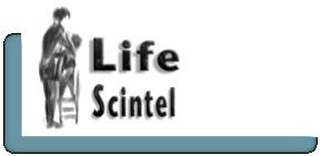Life Scintel